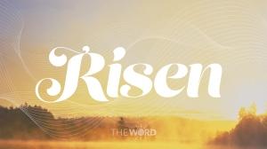 Risen-3-graphics-flascreen-full